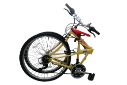 Columba Folding Bike Full View